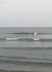 alexsurf