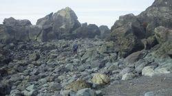 rockyhikegreen